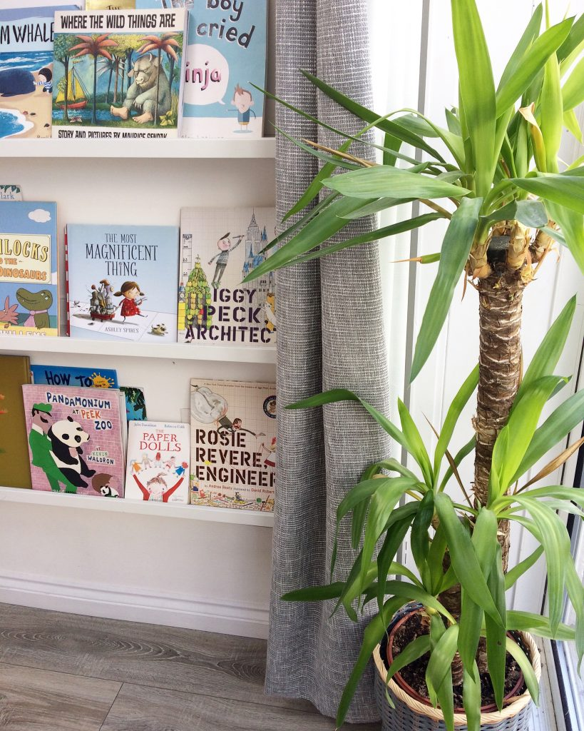 IKEA book shelves and plant