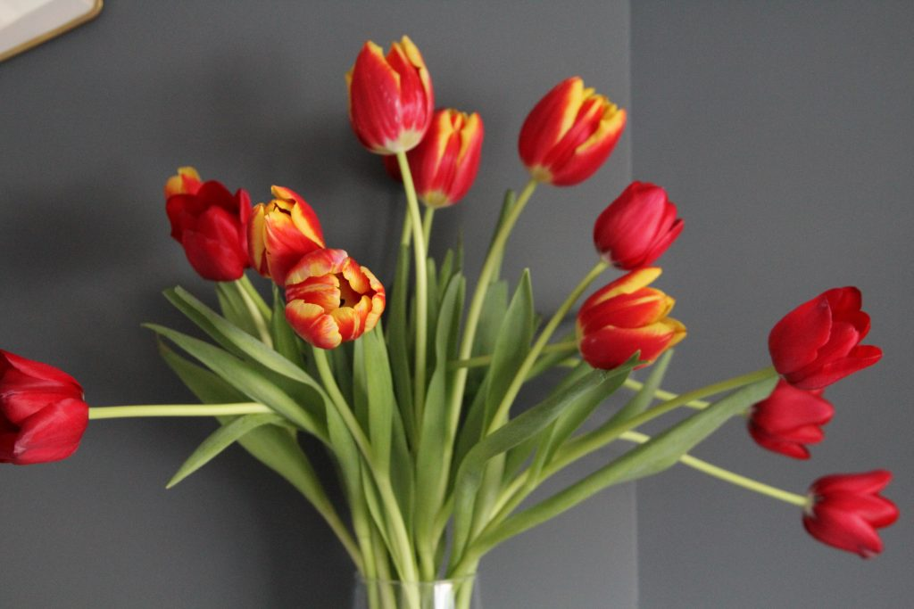Style At No.5 Red Tulips