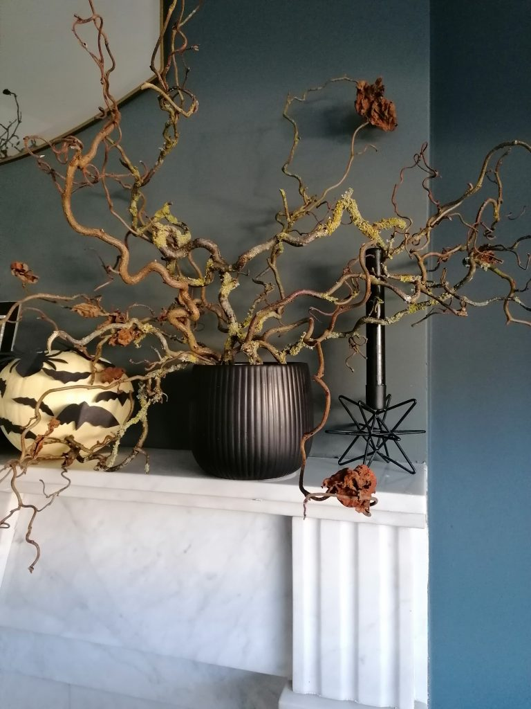 Witch hazel branches in a vase on the mantelpiece. Simple spooky DIY Halloween decoration, natural elements