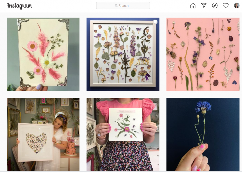 Pressed flowers by Nell Instagram feed - Limerick Gift Guides