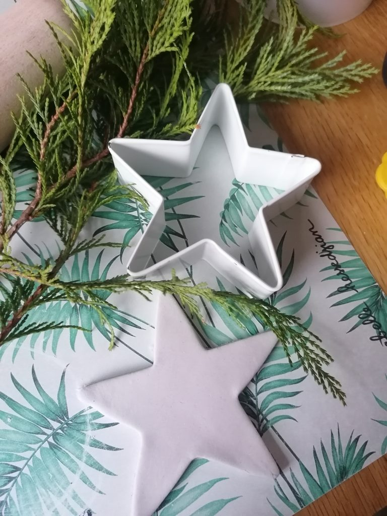 star shape and cookie cutter and piece of evergreen foliage