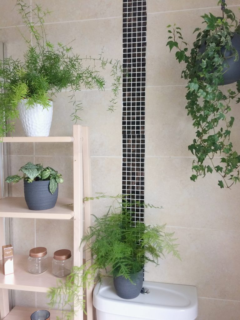 Plants in the bathroom of Style At No5. which update your home for Spring